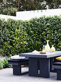 Modern gray furniture on the terrace with hedge and wall