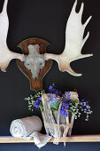 Summer flowers in zinc bucket enclosed in pieces of driftwood on shelf below hunting trophy on wall