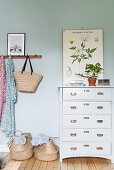 Botanical illustration on pale blue wall above chest of drawers