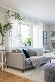 Couch and houseplants in bright living room