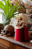Sideboard bizarrely decorated with human skulls
