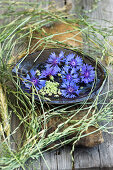 Bowl with cornflower blossoms, framed by grass