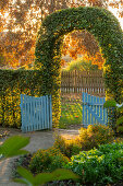 Beech hedge with archway and garden gate (Kreislehrgarten, Steinfurt, Germany)