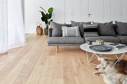 Grey sofa and coffee table in living room
