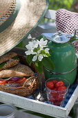Sandwiches on tray for picnic in garden