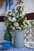 Branches of fruit blossom in old metal jug