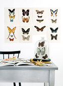 Postcards with a butterfly motif as a wall decoration above the table with a bell jar
