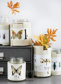 Paper cuffs affixed to screw-top jars with butterfly motifs