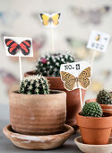 Homemade plant plugs with butterfly motifs in cacti