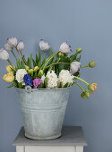 Tulips and hyacinths in a zinc bucket
