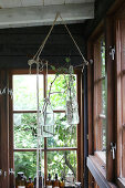 Sprigs in glass bottles hanging from ceiling beams