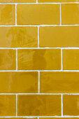 Mustard-yellow wall tiles
