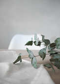 White tablecloth and eucalyptus branch on table