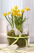 Handmade bird ornament in glass vase full of moss and narcissus