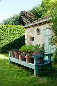 Bepflanzte Tontöpfe auf hellblauer Holzbank im Garten