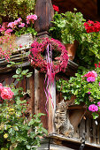 Cat and wreath of amaranth and rose hips on balcony