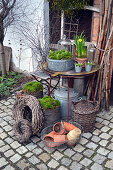 Early spring arrangement of narcissus in terracotta pots and hyacinths in zinc bowl on table in courtyard