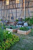 Vegetables in raised beds in rustic garden