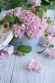 Hydrangea blossoms and raspberry branches in a nostalgic paper box