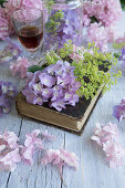 Hydrangea flowers and lady's mantle on book and glass of raspberry liquor