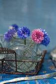 Blue and pink cornflowers in mason jar