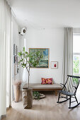 Fig tree in paper bag in front of couch and rocking chair