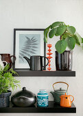 Chinese money plant and teapots on black floating shelves