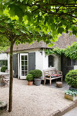 Thatched house with courtyard