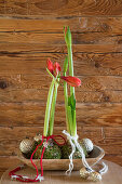 Red amaryllis in balls of moss and Christmas baubles in wooden trough
