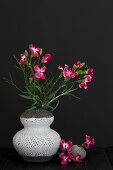 Modern arrangement of dianthus
