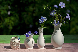 Row of white vases containing flax, voila, campanula and forget-me-not flowers