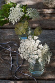 Queen Anne's lace in glass bottles