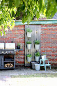 Vertical gardening: potted herbs hung from board