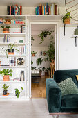 Shelves of houseplants and books next to and above doorway leading into kitchen