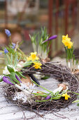 Wreath with grape hyacinths, hyacinths, narcissus, crocus and star-of-Bethlehem on garden table