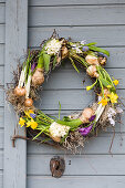 Wreath with grape hyacinths, hyacinths, narcissus, crocus and star-of-Bethlehem hung on door