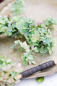 Hydrangea blossoms being tied with wire to a wreath