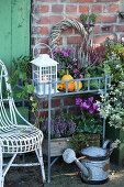 Autumn arrangement with bud heather, cyclamen, aster, peat myrtle, ivy, lantern, wreath, and decorative pumpkins