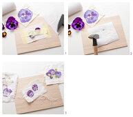 Transferring violas and pansies onto paper using flower pounding method