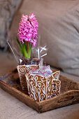 Decorated gingerbread cups with caramel candies and with hyacinth