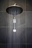 Rainfall shower head in bathroom with black tiles
