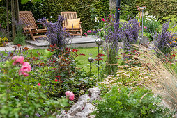 Summer flower beds in a British garden, deck chairs on a wooden deck, lavender bushes tied together next to roses