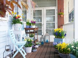 Various spring flowers in pots on a wooden balcony