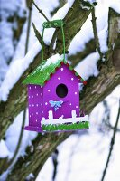 Bird house hanging in snow-covered tree