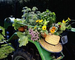 Herbs, summer flowers and a straw hat on a tractor