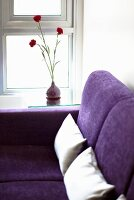A purple sofa with two white cushions near a window with a vase of red carnations on the window sill
