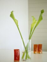 Glass vase with three furled leaves on shelf.