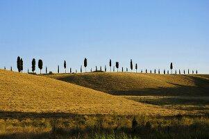 Landschaftsbild aus der Toskana