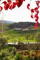 Ausblick von der Buschenschank, Steiermark, Österreich