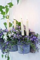 White candles in zinc-plated flower pots of campanula and petunias